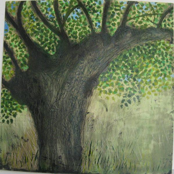 Tree by Tessa Framptn